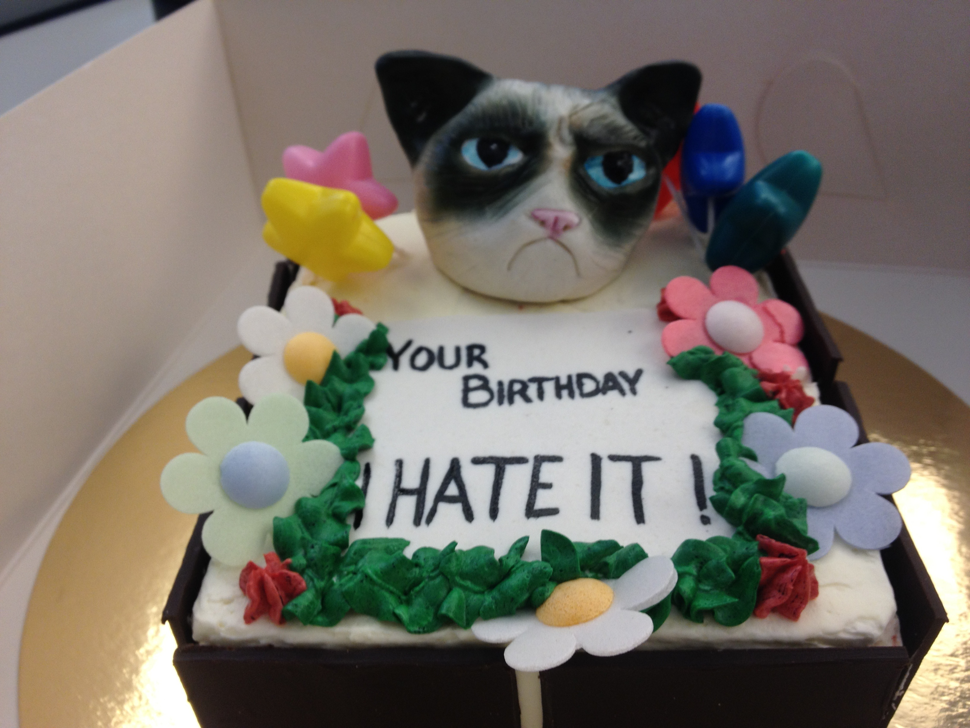 Image Gallery of Grumpy Cat Crappy Birthday Cake